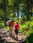 Deutschland, Bayern, Niederbayern, Naturpark Bayerischer Wald: der Arbersteig (a pfundigs Wegerl) fuehrt vom Grossen Arbersee nach ca. 4 km und 500 Hoehenmetern zum Gipfel des Grossen Arber, mit 1455 m hoechster Berg des Bayerischen Waldes und Niederbayerns, auch als 'Koenig des Bayerischen Waldes' bezeichnet | Germany, Bavaria, Lower-Bavaria, Nature Park Bavarian Forest: hiking trail Arbersteig starting at Great Arber Lake to the Great Arber summit, length ca. 4 km and 500 m difference in altitude