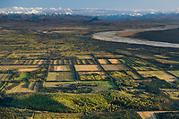 Aerial of the agricultural plots in Delta Junction, big delta river and the Alaska Range mountains, Interior, Alaska.