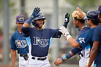 GCL Rays Abiezel Ramirez (2) high fives teammates after hitting a home run during a Gulf Coast League game against the GCL Pirates on August 7, 2019 at Charlotte Sports Park in Port Charlotte, Florida.  GCL Rays defeated the GCL Pirates 5-3 in the second game of a doubleheader.  (Mike Janes/Four Seam Images)