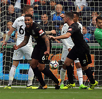 Jamaal Lascelles of Newcastle United (L) celebrates his goal with team mate Ciaran Clark during the Premier League match between Swansea City and Newcastle United at The Liberty Stadium, Swansea, Wales, UK. Sunday 10 September 2017