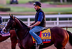 October 27, 2019 : Breeders' Cup Classic entrant War of Will, trained by Mark E. Casse, exercises in preparation for the Breeders' Cup World Championships at Santa Anita Park in Arcadia, California on October 27, 2019. Scott Serio/Eclipse Sportswire/Breeders' Cup/CSM