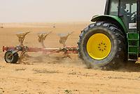 EGYPT, Farafra, potato farming in the desert, ploughing of field with tractor, Pivot irrigation with fossile groundwater from the Nubian Sandstone Aquifer which is pumped from 1000 metres deep wells  / AEGYPTEN, Farafra, United Farms, Kartoffelanbau in der Wueste, Pfluegen eines Feldes, die kreisrunden Felder werden mit Pivot Kreisbewaesserungsanlagen mit fossilem Grundwasser des Nubischer Sandstein-Aquifer aus 1000 Meter tiefen Brunnen bewaessert