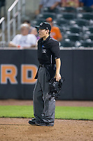Home plate umpire Roberto Pattison between innings of the New York Penn League game between the Hudson Valley Renegades and the Aberdeen IronBirds at Leidos Field at Ripken Stadium on July 27, 2017 in Aberdeen, Maryland.  The IronBirds defeated the Renegades 3-0 in game two of a double-header.  (Brian Westerholt/Four Seam Images)