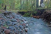 MT. RAINIER National Park 2006 STORM DAMAGE
