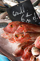 On a street market. Grondin, gurnard, gurnet at a fishmongers. On Les Quais. Bordeaux city, Aquitaine, Gironde, France