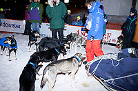 Martin Buser's son Rohn snacks his dads dogs at the 2010 finish line in Nome with the dogs out of harness and walking around loose