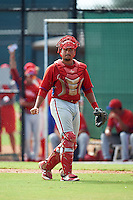Philadelphia Phillies catcher Edgar Cabral (3) during an Instructional League game against the Toronto Blue Jays on October 1, 2016 at the Carpenter Complex in Clearwater, Florida.  (Mike Janes/Four Seam Images)