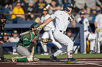 Michigan Wolverines outfielder Jesse Franklin (7) follows through on his swing during the NCAA baseball game against the Eastern Michigan Eagles on May 8, 2019 at Ray Fisher Stadium in Ann Arbor, Michigan. Michigan defeated Eastern Michigan 10-1. (Andrew Woolley/Four Seam Images)
