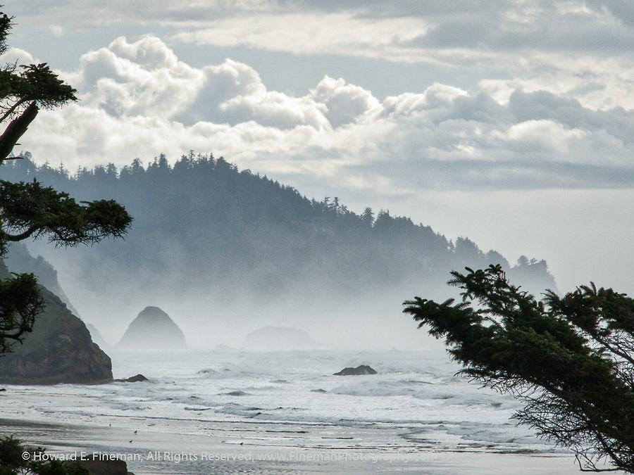 Wind Fog Rocks, Oregon Coast