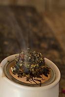 Verräuchern von Räucherkugeln, Räucherkugel auf Räucherstövchen, Räucher-Stövchen, Räuchergefäß mit getrocknete Kräuter, Blüten, Knospen und Fichtenharz, Harz. Räuchern, Räucherritual, Räuchern mit Kräutern, Kräuter verräuchern, Wildkräuter, Duftkräuter, Duft, Smoking with herbs, wild herbs, aromatic herbs, fumigate, cure, smoke, censer, incense burner, perfume burner. Fichtenharz, Fichten-Harz, Baumharz, Harz, Harztropfen, liquid pitch, tree gum, galipot, gallipot. Gewöhnliche Fichte, Rot-Fichte, Rotfichte, Picea abies, Common Spruce, Norway spruce, L'Épicéa, Épicéa commun. Oregano, Wilder Dost, Echter Dost, Gemeiner Dost, Oreganum, Origanum vulgare, Oregano, Wild Marjoram. Tüpfel-Johanniskraut, Echtes Johanniskraut, Tüpfeljohanniskraut, Hypericum perforatum, St. John´s Wort. Gewöhnlicher Beifuß, Beifuss, Artemisia vulgaris, Mugwort, common wormwood. Echtes Mädesüß, Mädesüss, Filipendula ulmaria, Meadow Sweet, Quenn of the Meadow, tea, herbal tea, herb tea, Reine des prés. Schwarzer Holunder, Holunder, Sambucus nigra, Fliederbeeren, Fliederbeere, Common Elder, Elder, Elderberry, Sureau commun, Sureau noir. Rose, Rosenblätter, Rosa spec.
