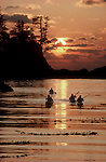 Sea kayakers, Barkley Sound, Broken Islands, Pacific Rim National Park, west coast of Vancouver Island, British Columbia, Canada, sunset, Pacific Ocean,..