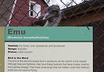 Hilarious Emu peering over his own description.
