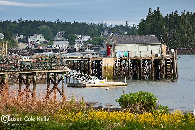 The fishing village of Port Clyde, ME, USA
