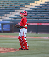 Edgar Quero - Los Angeles Angels 2021 extended spring training (Bill Mitchell)