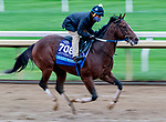 October 30, 2020: Jackie'S Warrior, trained by trainer Steven M. Asmussen, exercises in preparation for the Breeders' Cup Juvenile at Keeneland Racetrack in Lexington, Kentucky on October 30, 2020. Scott Serio/Eclipse Sportswire/Breeders Cup/CSM