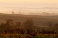 Light from the sunrise illuminates a farm growing wheat in Madison County, VA.  Photo/Andrew Shurtleff