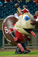 """Zooperstars character """"Snail Earnhardt Jr."""" entertains the fans between innings of the South Atlantic League game between the Kannapolis Intimidators and the Lakewood BlueClaws at FirstEnergy Park on August 8, 2012 in Lakewood, New Jersey.  The BlueClaws defeated the Intimidators 5-0.  (Brian Westerholt/Four Seam Images)"""
