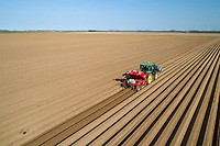 Planting potatoes - Lincolshire, April