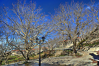 Vlongos is a mountain village in Arcadia, Peloponnese, Greece.