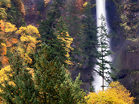 Multnomah Falls with fall color. Columbia River Gorge National Scenic Area, Oregon