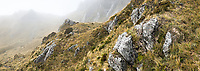 Rocky cliffs of Southern Alps in clouds with alpine vegetation, Westland Tai Poutini National Park, West Coast, South Westland, UNESCO World Heritage Area, New Zealand, NZ