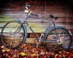 Bike in Oxford, Miss.
