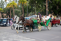 Marrakesh, Morocco.  Tourists in Horse-drawn Carriage.