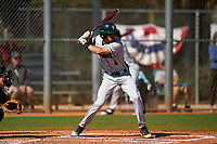 Dartmouth Big Green Bryce Daniel (4) bats during a game against the Omaha Mavericks on February 23, 2020 at North Charlotte Regional Park in Port Charlotte, Florida.  Dartmouth defeated Omaha 8-1.  (Mike Janes/Four Seam Images)