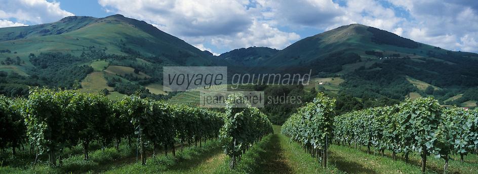 France, Pyrénées-Atlantiques (64), Pays-Basque,  Saint-Jean-de-Luz: Env de Saint-Jean-Pied-de-Port: Vignoble d' Irouleguy // France, Pyrenees Atlantiques, Basque Country, near Saint Jean Pied de Port : Irouleguy vineyard