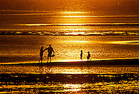 Family walking among the tidal flats at Scakett Beach, Orleans, Cape Cod, MA