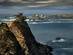 View of sea stacks at Sunset Bay State Park in Oregon, USA