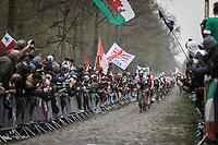 Matteo Trentin (ITA/Mitchelton Scott) leading the peloton over the infamous Arenberg Forest/Bois de Wallers cobbles. <br /> <br /> 117th Paris-Roubaix (1.UWT)<br /> 1 Day Race: Compiègne-Roubaix (257km)<br /> <br /> ©kramon