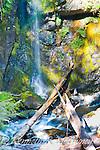 McGivney.Sol Duc Waterfall.