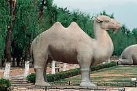 China, Peking (Beijing) Minggräber, Geisterallee, Kamel, Unesco-Weltkulturerbe