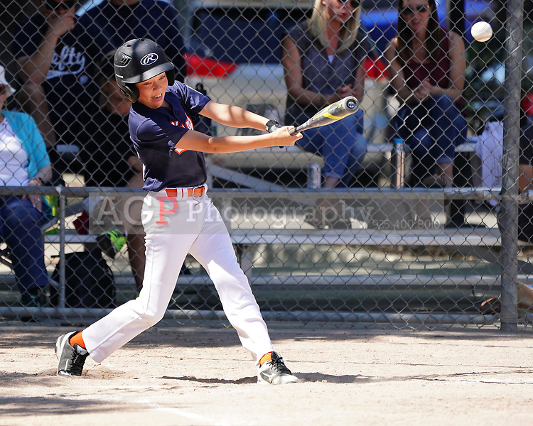 PLL Major Astros Action Saturday May 11, 2019. (Photo by AG/AGP Sports)