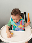 10 month old baby boy sitting in high chair holding raw carrot in one hand picking up sweet pepper with pincer grasp