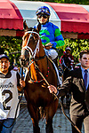 SEPT 06, 2021: DEFEND in the Gr.1 Hopeful  Stakes, for 2-year olds, going 7 furlongs, at Saratoga Racecourse, Saratoga Springs, New York. Sue Kawczynski/Eclipse Sportswire/CSM