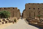 Temples of Karnak, First Pylon , entrance