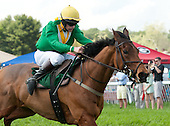 2012 STEEPLECHASE HORSES - CONTINUOUSLY UPDATED