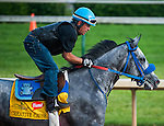 Creative Cause , trained by Mike Harrington and to be ridden by Joel Rosario, works out in preparation for the 138th Kentucky Derby at Churchill Downs in Louisville, Kentucky on May 3, 2012