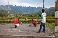 Borobudur, Java, Indonesia.  Racing Pigeons Arriving at the Finish Line.