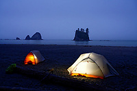Glowing tents camping on beach below sea stack on Washington Coast, Scotts Bluff, Olympic National Park, Washington, USA