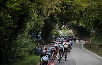 peloton sprinting down the last climb towards the finish (3km to go)<br /> <br /> Stage 8: Tortoreto Lido to Pesaro (239km)<br /> 102nd Giro d'Italia 2019<br /> <br /> ©kramon