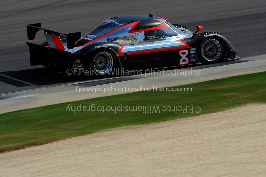 #8 Starworks Motorsports Ford/Riley of Mike Forest &  Ryan Dalziel