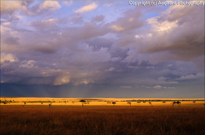 We watched this storm develop over the plains of the Masai Mara National Park in Kenya.  As the sun set, a break in the clouds behind me allowed its rays to illuminate the distant plains for a minute.<br /> <br /> Nikon F3HP, 20mm lens