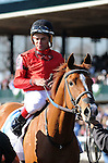 April 05, 2014: Rosalind, for trainer Kenny McPeek, owner Landaluce Educe Stables and jockey Joel Rosario, dead heats for the win in the $500,000 G1 Ashland S. at Keeneland.Jessica Morgan/ESW/CSM