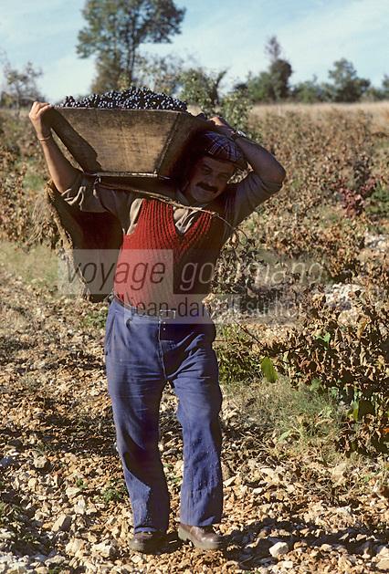 Europe/France/Midi-Pyrénées/46/Lot/Env. d'Esclauzels : Vignoble de Cahors - Porteur de hotte à vendange [Non destiné à un usage publicitaire - Not intended for an advertising use]<br /> PHOTO D'ARCHIVES // ARCHIVAL IMAGES<br /> FRANCE 1980