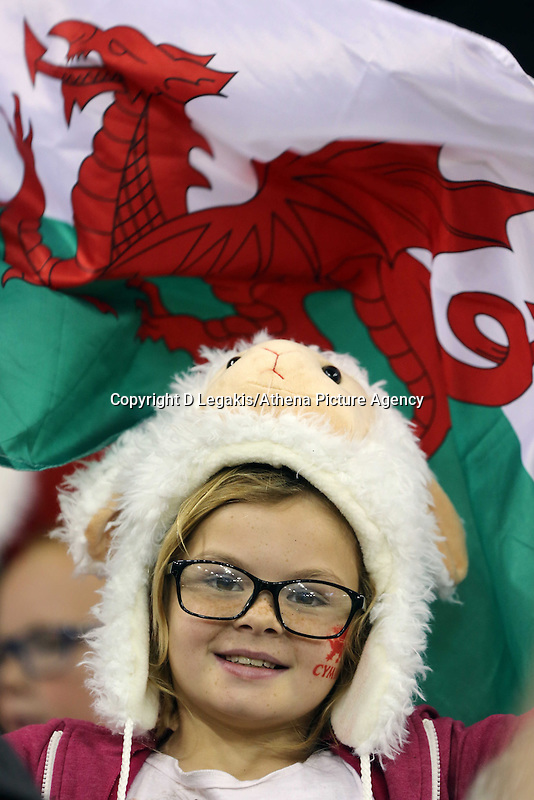 Pictured: A young welsh rugby fan with a flag. Saturday 15 November 2014<br /> Re: Dove Men Series rugby, Wales v Fiji at the Millennium Stadium, Cardiff, south Wales, UK.