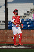 Johnson City Cardinals catcher Carlos Soto (47) during a game against the Danville Braves on July 29, 2018 at TVA Credit Union Ballpark in Johnson City, Tennessee.  Johnson City defeated Danville 8-1.  (Mike Janes/Four Seam Images)