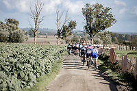 Peloton over the Plugstreet gravel section<br /> <br /> 9th Gent-Wevelgem in Flanders Fields 2020<br /> Elite Womens Race (1.WWT)<br /> <br /> One Day Race from Ypres (Ieper) to Wevelgem 141km<br /> <br /> ©kramon
